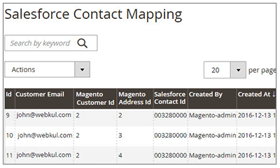 Salesforce Connector Customer Mapping