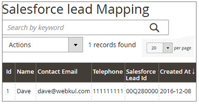 Salesforce Connector Leads Mapping